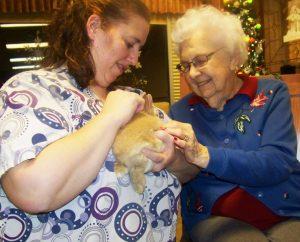 Gardenside Rabbit Therapy